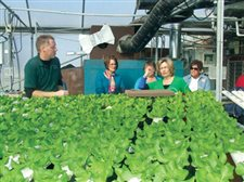Garden club learns about hydroponic gardening